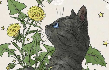 Interview with Kathleen Jennings Illustrator of Gobbolino, the Witch's Cat